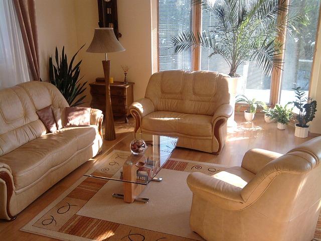 palma v obýváku